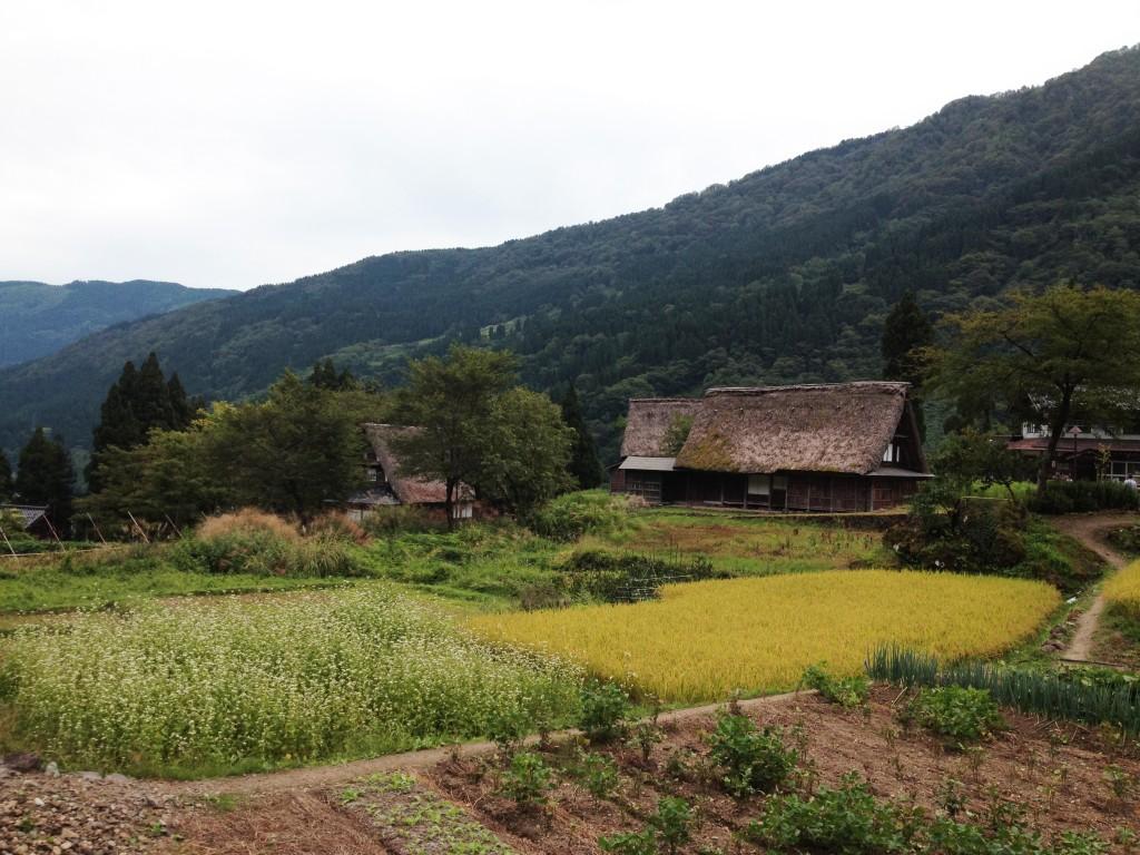 Ainokura (Gokyama)